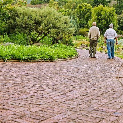מרכזי יום לקשישים