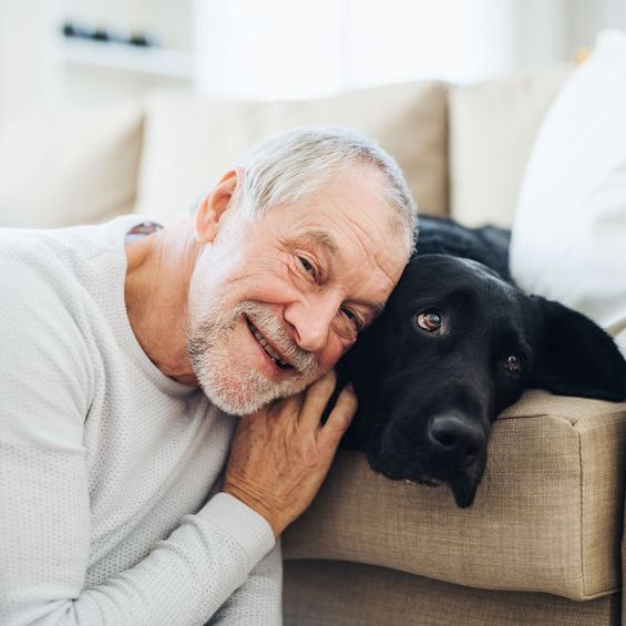 Benefits of Taking Care of Pets for Senior Adults