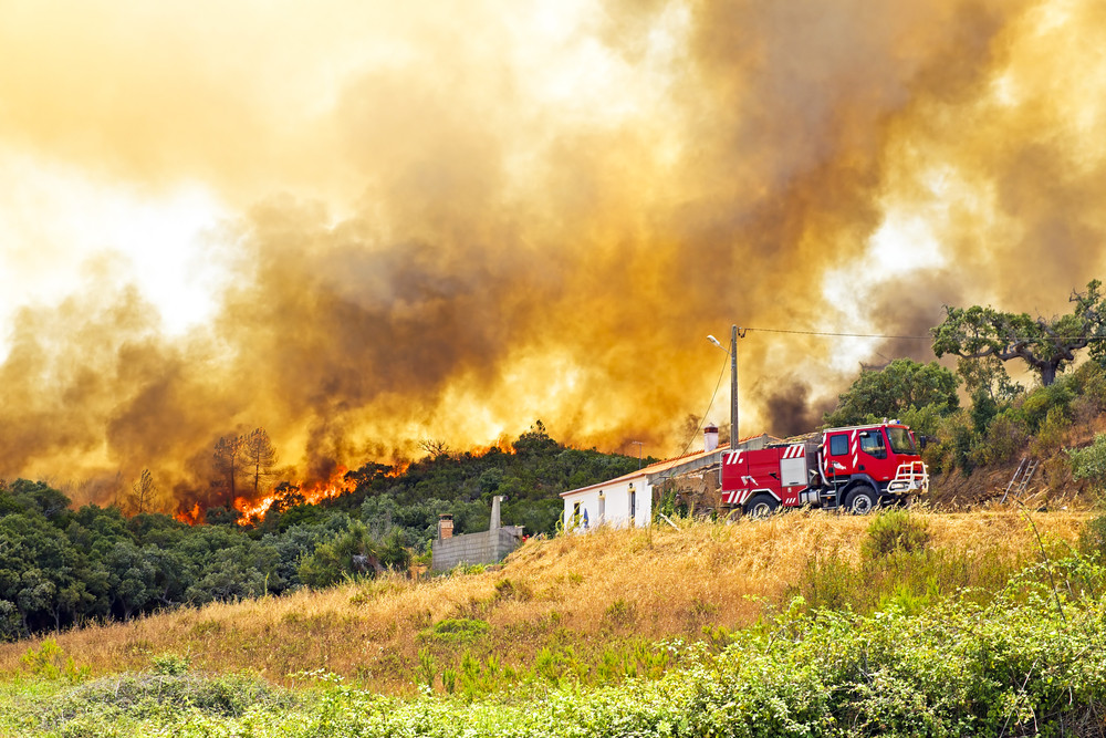 Fire Blazes Across Israel: What To Do?