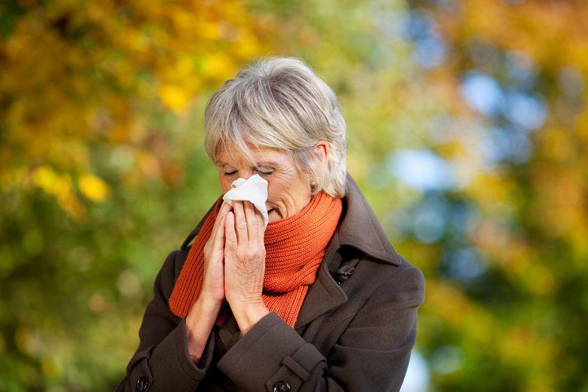 אלרגיה בקרב קשישים