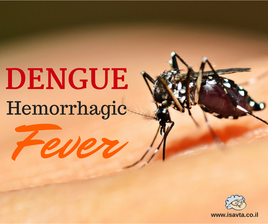 Dengue Fever: An Outbreak