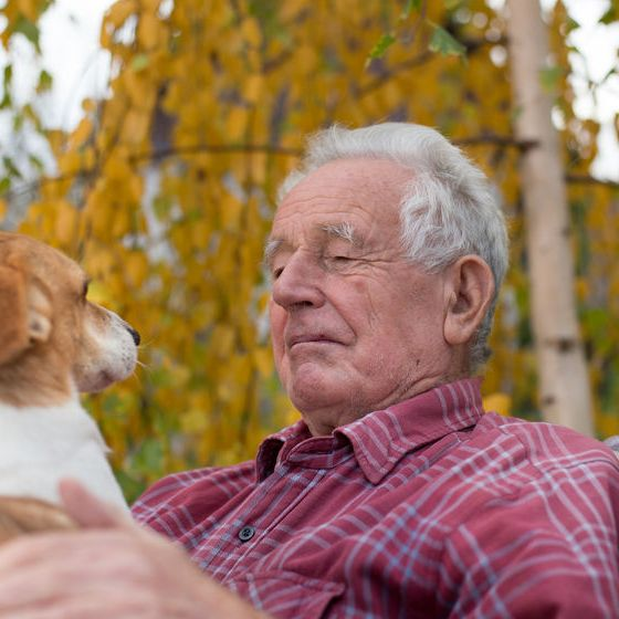 Important Things to Know in Choosing Pets for Senior Adults